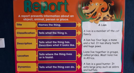 213| Researching- Information Reports