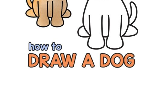 How to draw a dog |213