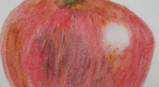 Whole School | Adult Art Classes Are Back!