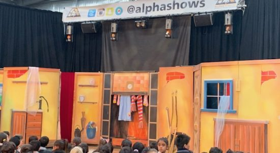 404| Alpha Shows