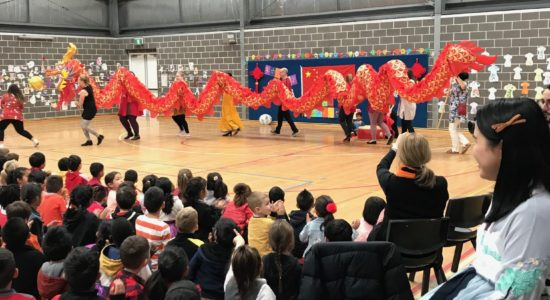 Principal's blog | Dragon Dynasty Festival
