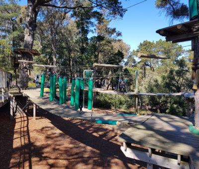 Year 3 Camp Manyung